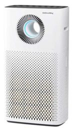 Best Air Purifier For Asthma And Allergy In India
