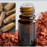 Essential Oil Uses In Diffusers & Cool Mist Humidifiers In India