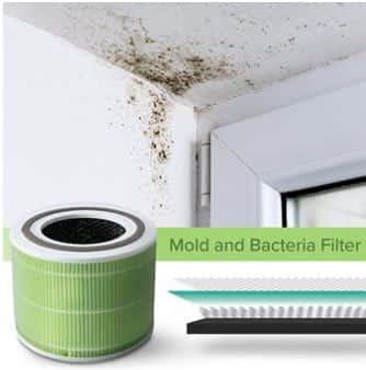 Levoit Core 300 Mold Bacteria Filter