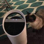 TruSens Z-1000 Review Air Purifier For Small Rooms