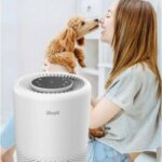 Levoit Core 200S Review A Smart Air Purifier